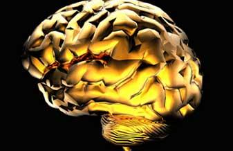 - neurologia-varginha-1376334603
